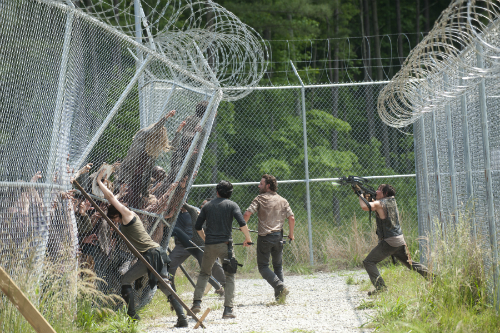 Walkers come through the fence
