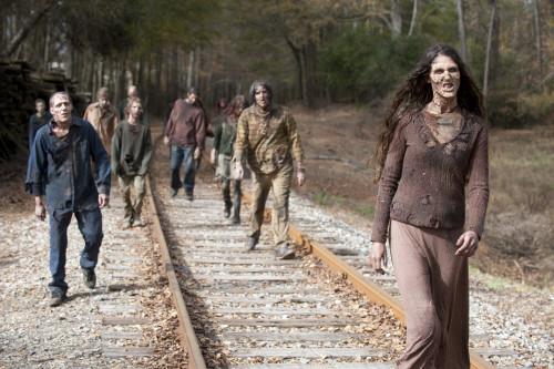 herd Walking Dead