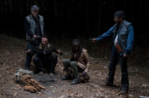 Rick and Michonne Walking Dead