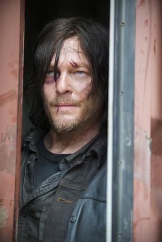 Captive no more. Photo credit Gene Page/AMC.